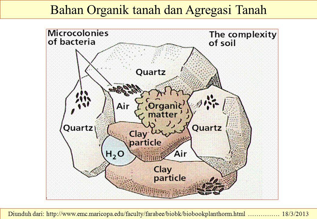 Bahan Organik tanah dan Agregasi Tanah
