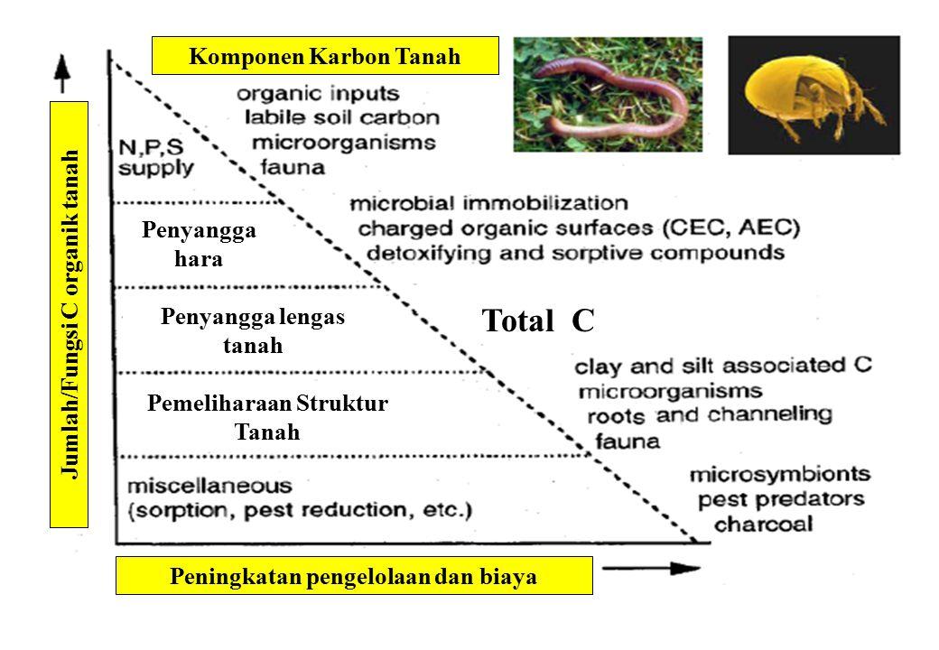 Total C Komponen Karbon Tanah Penyangga hara