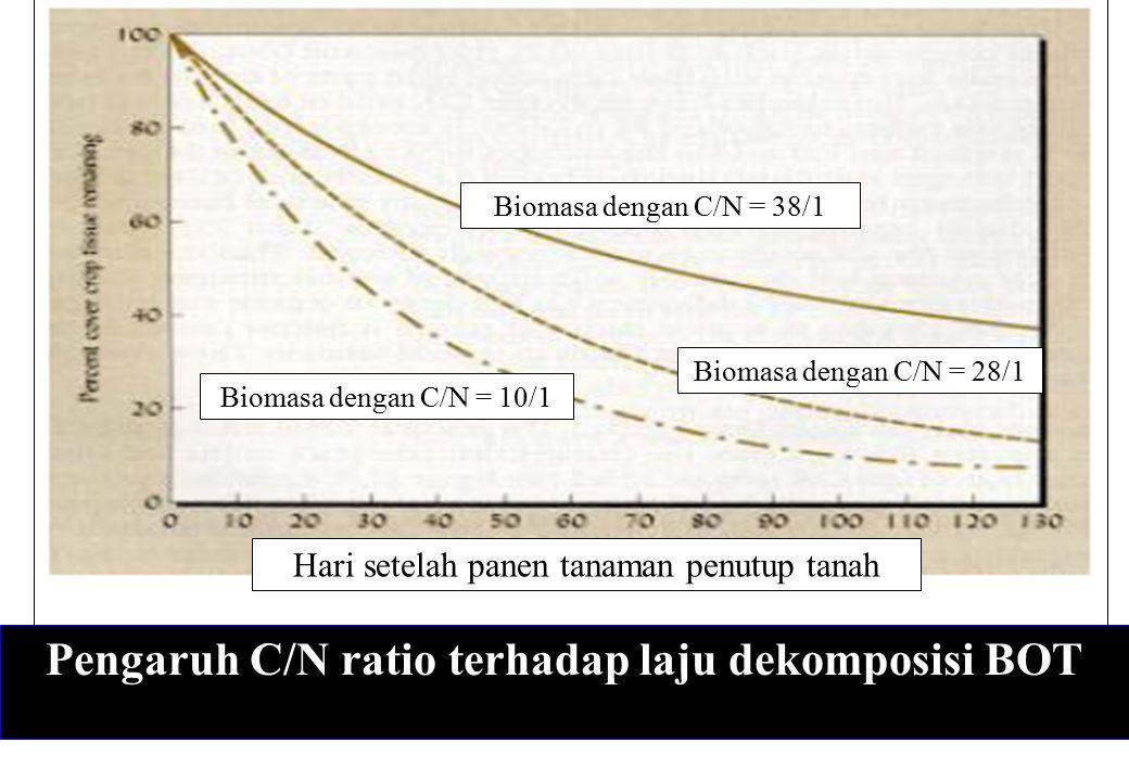 Pengaruh C/N ratio terhadap laju dekomposisi BOT