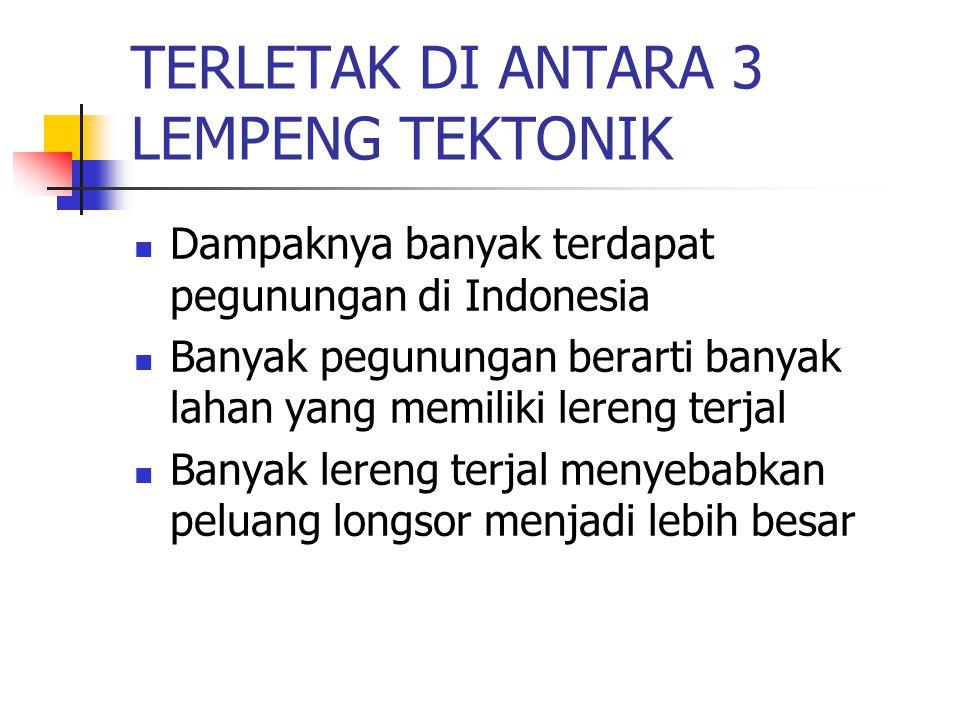 TERLETAK DI ANTARA 3 LEMPENG TEKTONIK