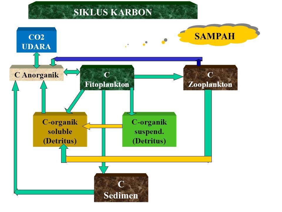 SIKLUS KARBON SAMPAH C Sedimen CO2 UDARA C Anorganik C Fitoplankton