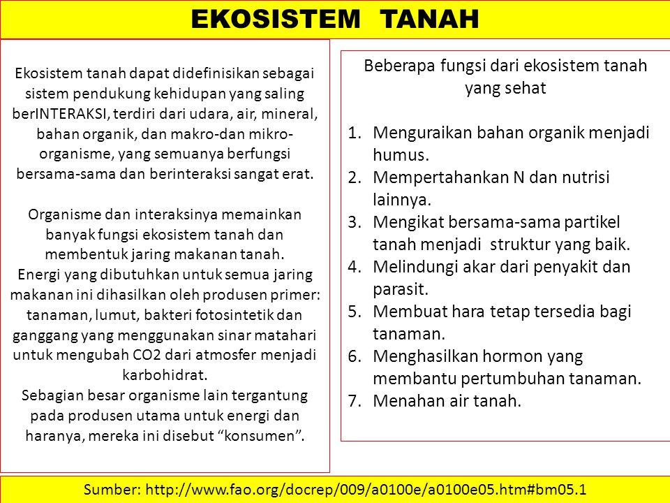 EKOSISTEM TANAH Beberapa fungsi dari ekosistem tanah yang sehat