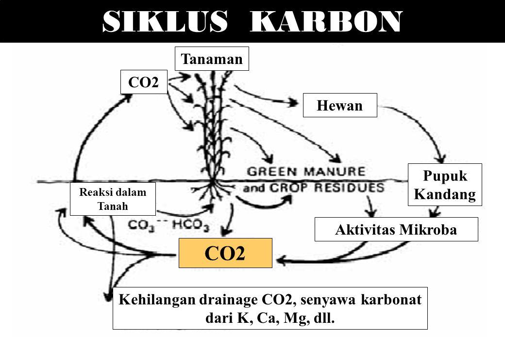 Kehilangan drainage CO2, senyawa karbonat dari K, Ca, Mg, dll.