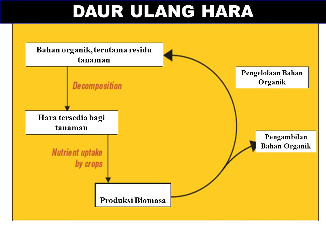 DAUR ULANG HARA Bahan organik, terutama residu tanaman