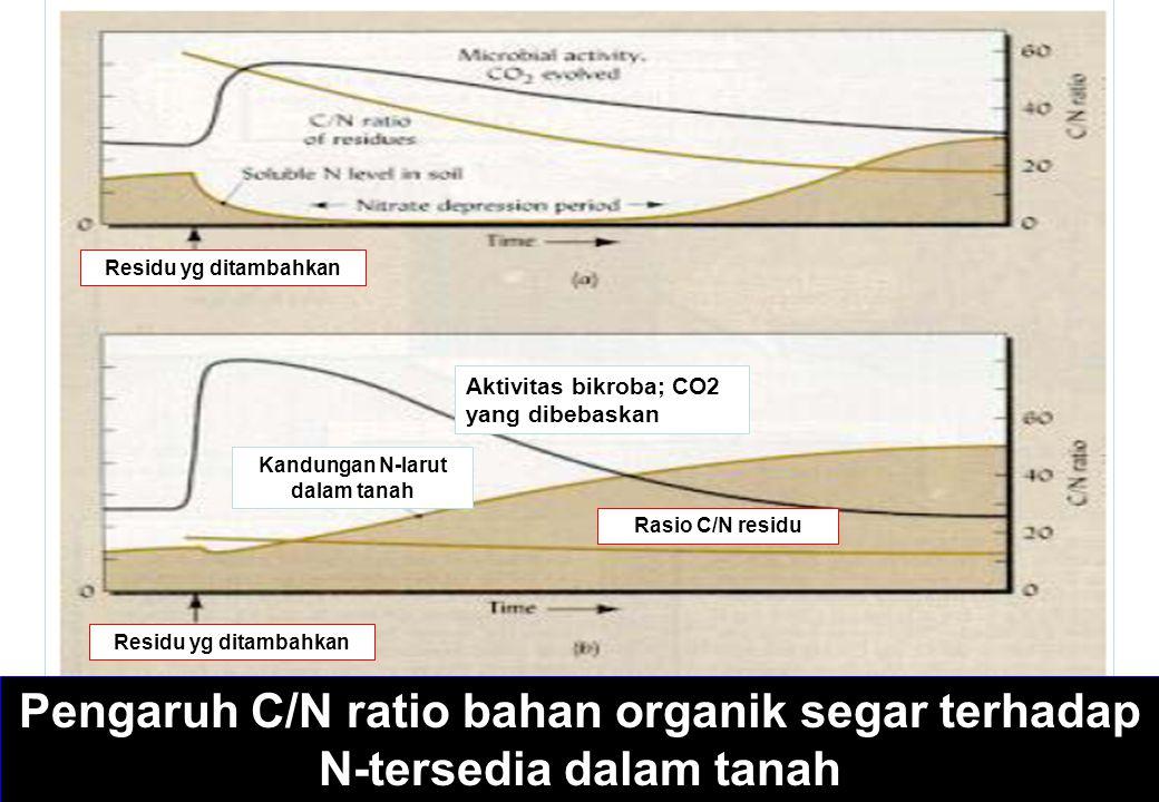 Pengaruh C/N ratio bahan organik segar terhadap N-tersedia dalam tanah