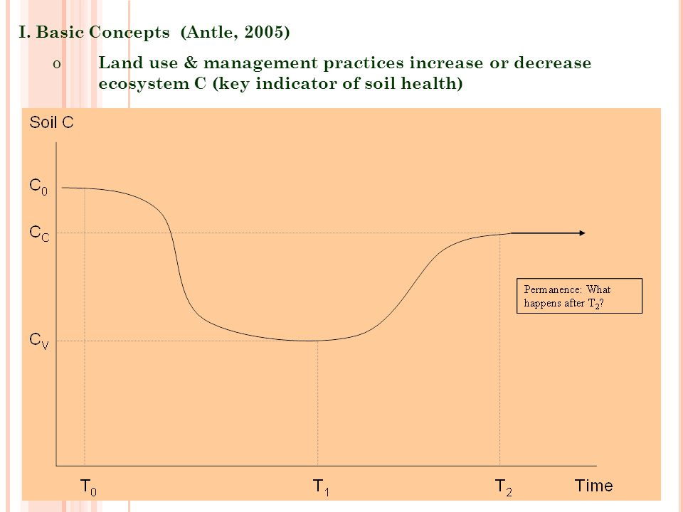 I. Basic Concepts (Antle, 2005)