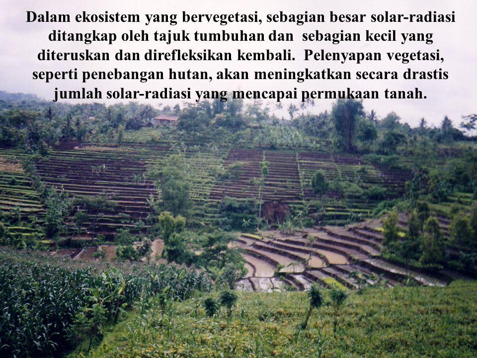 Dalam ekosistem yang bervegetasi, sebagian besar solar-radiasi ditangkap oleh tajuk tumbuhan dan sebagian kecil yang diteruskan dan direfleksikan kembali. Pelenyapan vegetasi, seperti penebangan hutan, akan meningkatkan secara drastis jumlah solar-radiasi yang mencapai permukaan tanah.