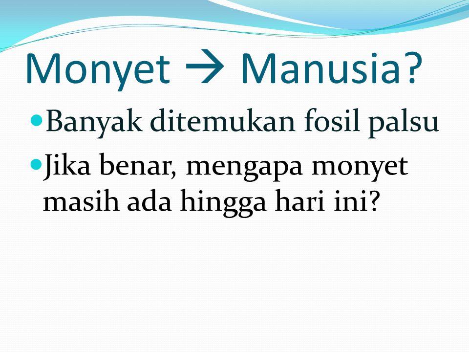 Monyet  Manusia Banyak ditemukan fosil palsu