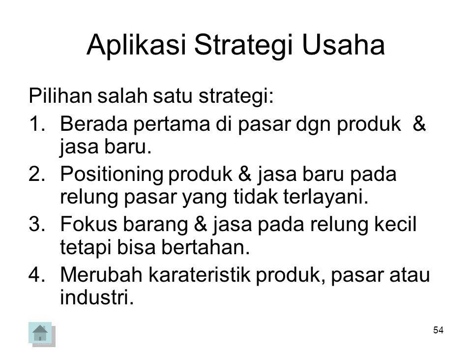 Aplikasi Strategi Usaha