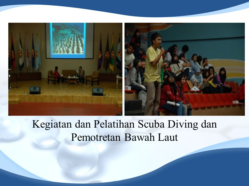 Kegiatan dan Pelatihan Scuba Diving dan Pemotretan Bawah Laut