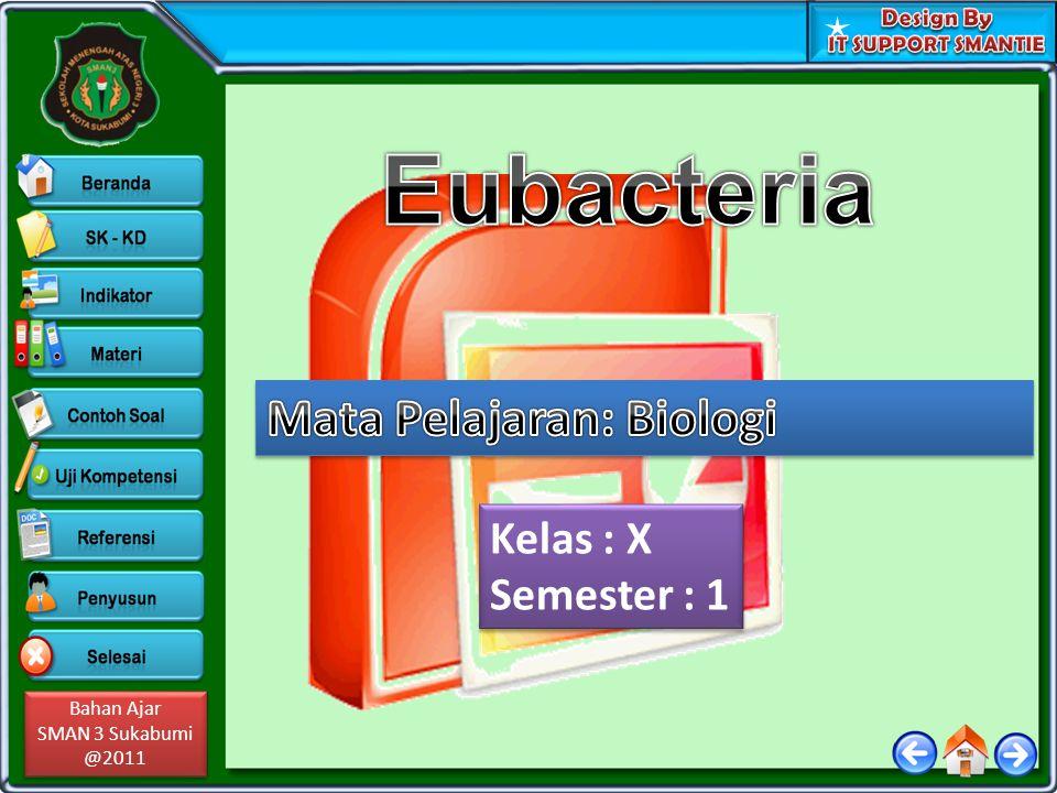 Eubacteria Mata Pelajaran: Biologi Kelas : X Semester : 1