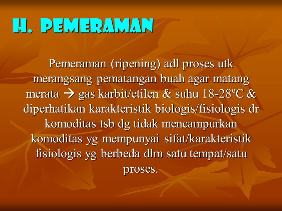 H. PEMERAMAN