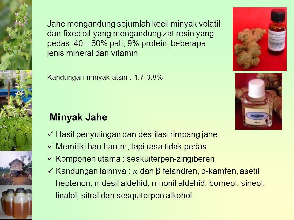 Jahe mengandung sejumlah kecil minyak volatil dan fixed oil yang mengandung zat resin yang pedas, 40—60% pati, 9% protein, beberapa jenis mineral dan vitamin