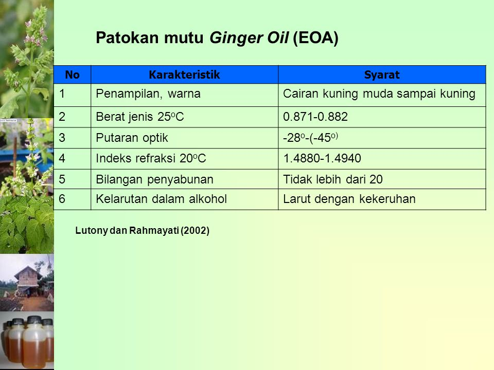 Patokan mutu Ginger Oil (EOA)