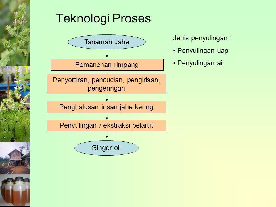Teknologi Proses Jenis penyulingan : Tanaman Jahe Penyulingan uap