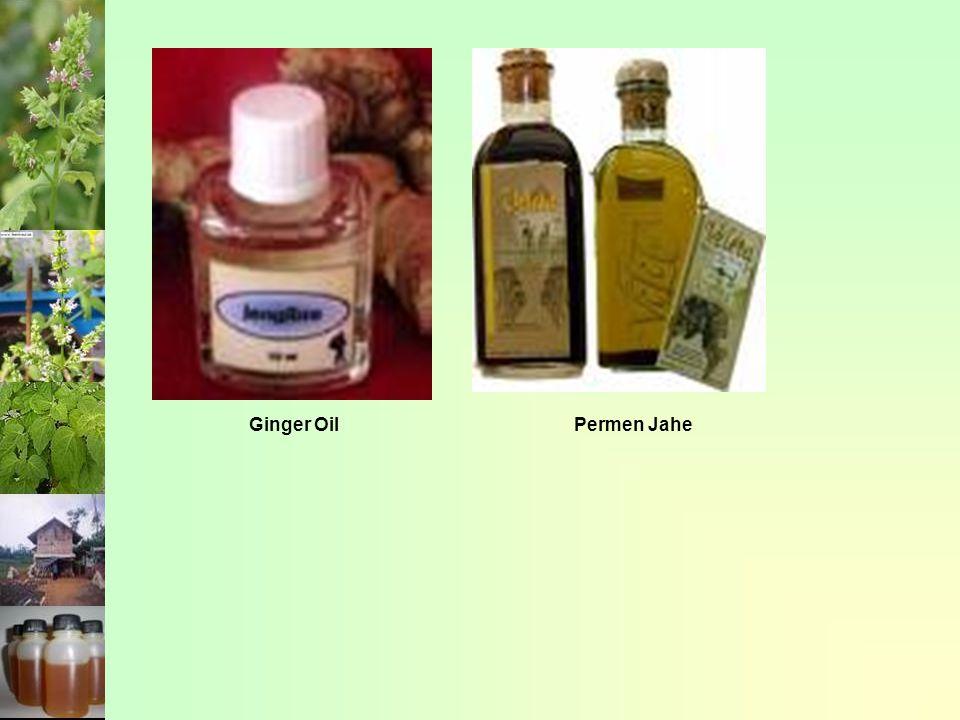 Ginger Oil Permen Jahe