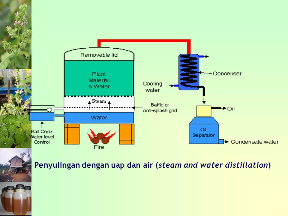 Penyulingan dengan uap dan air (steam and water distillation)