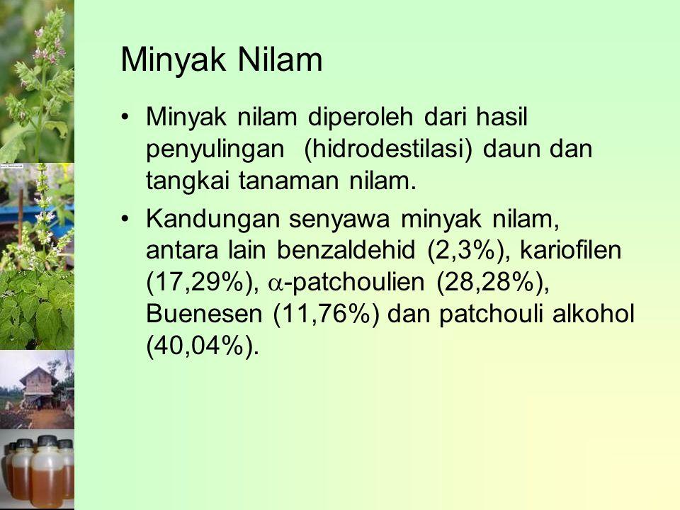 Minyak Nilam Minyak nilam diperoleh dari hasil penyulingan (hidrodestilasi) daun dan tangkai tanaman nilam.