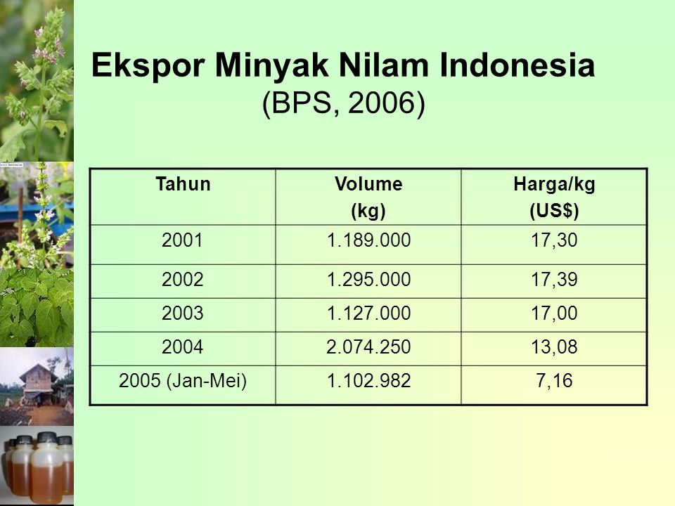 Ekspor Minyak Nilam Indonesia (BPS, 2006)