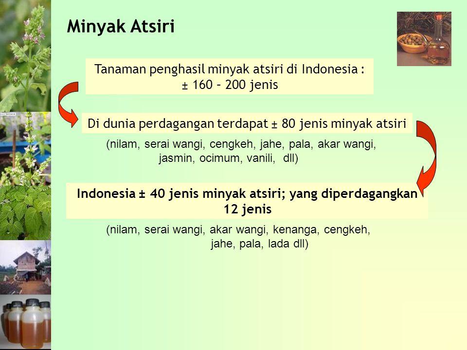 Indonesia ± 40 jenis minyak atsiri; yang diperdagangkan 12 jenis
