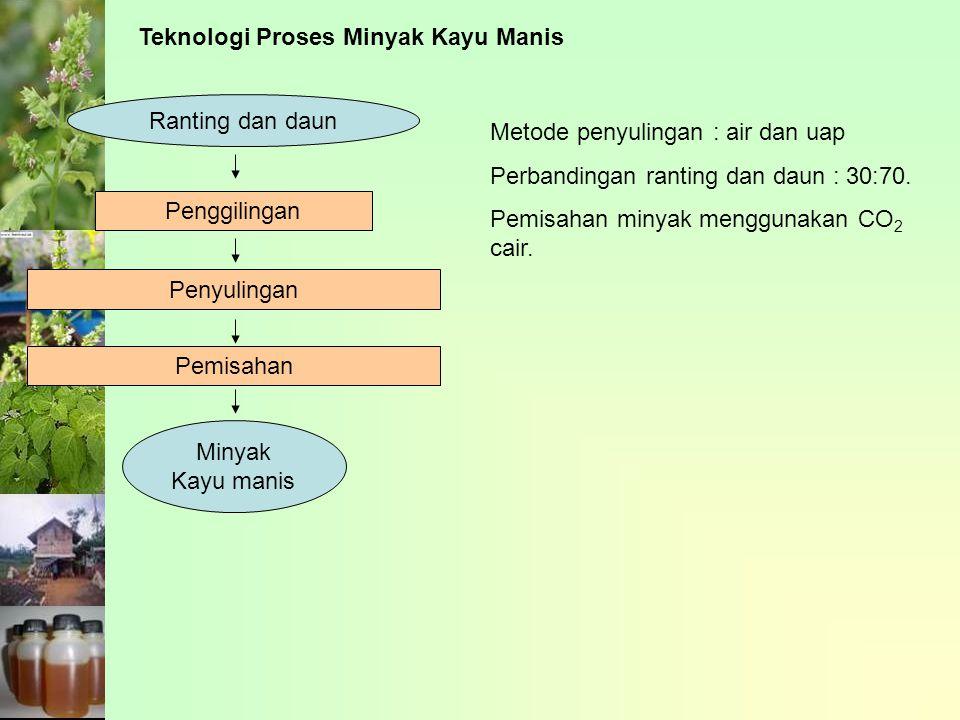 Teknologi Proses Minyak Kayu Manis