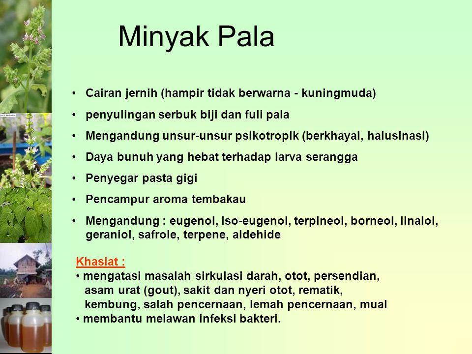 Minyak Pala Cairan jernih (hampir tidak berwarna - kuningmuda)
