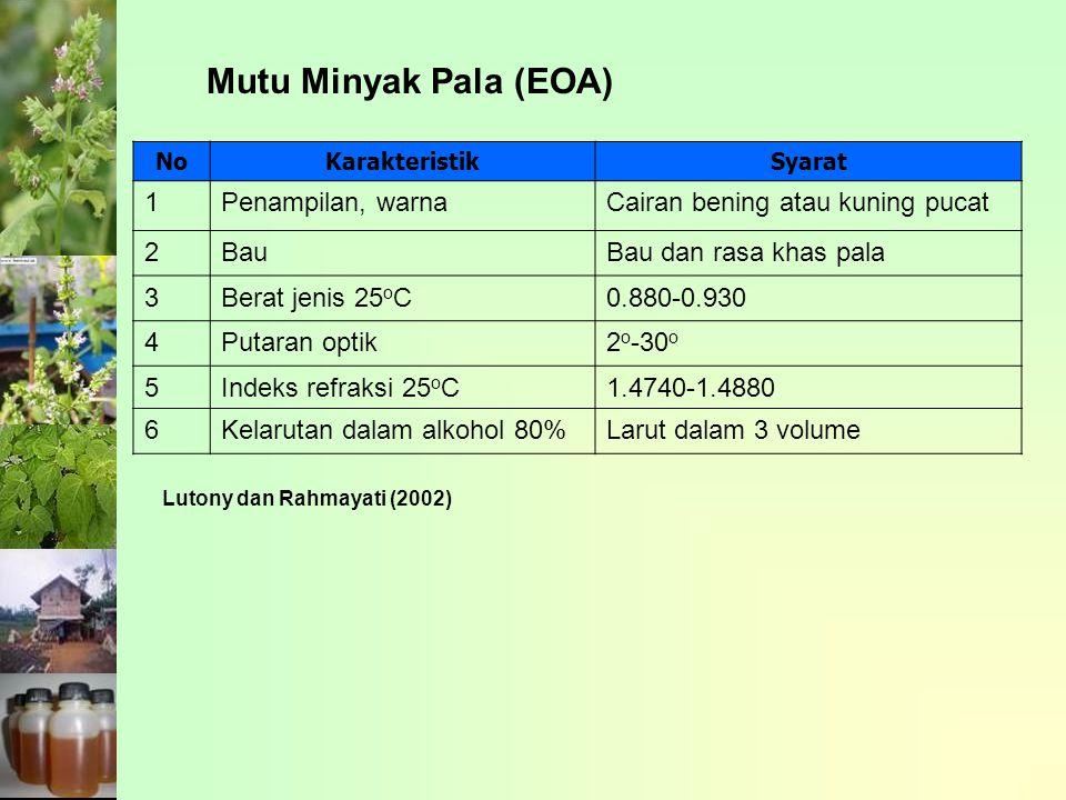 Mutu Minyak Pala (EOA) 1 Penampilan, warna
