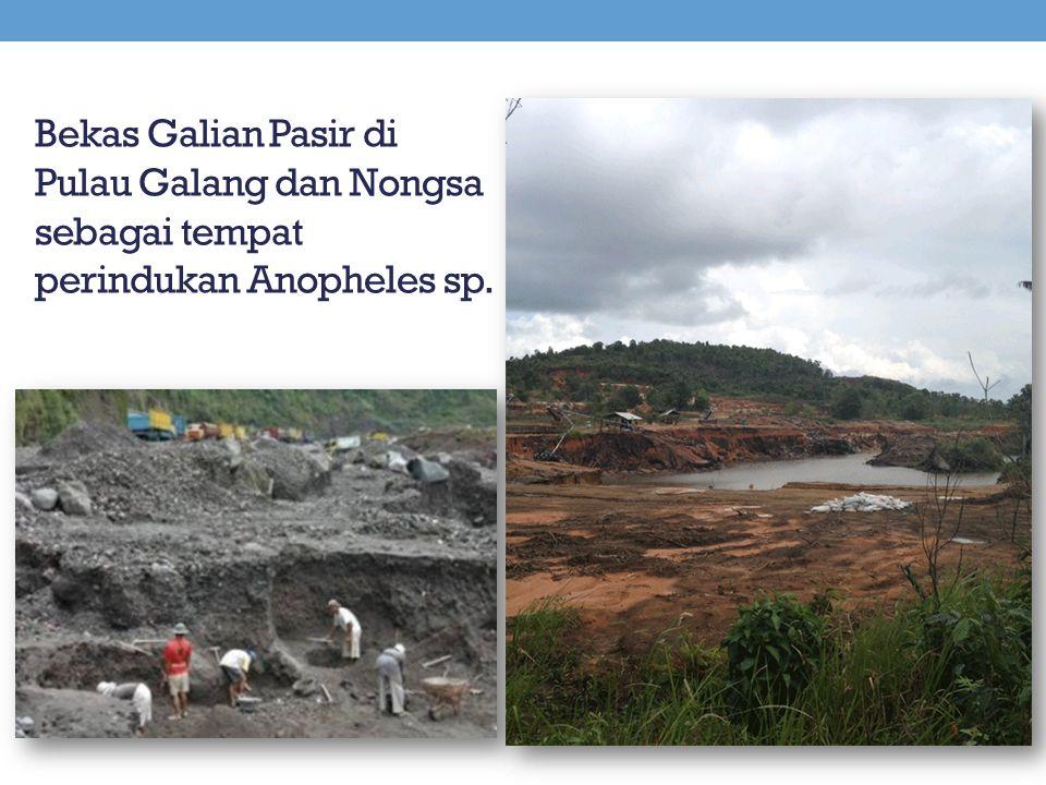 Bekas Galian Pasir di Pulau Galang dan Nongsa sebagai tempat perindukan Anopheles sp.