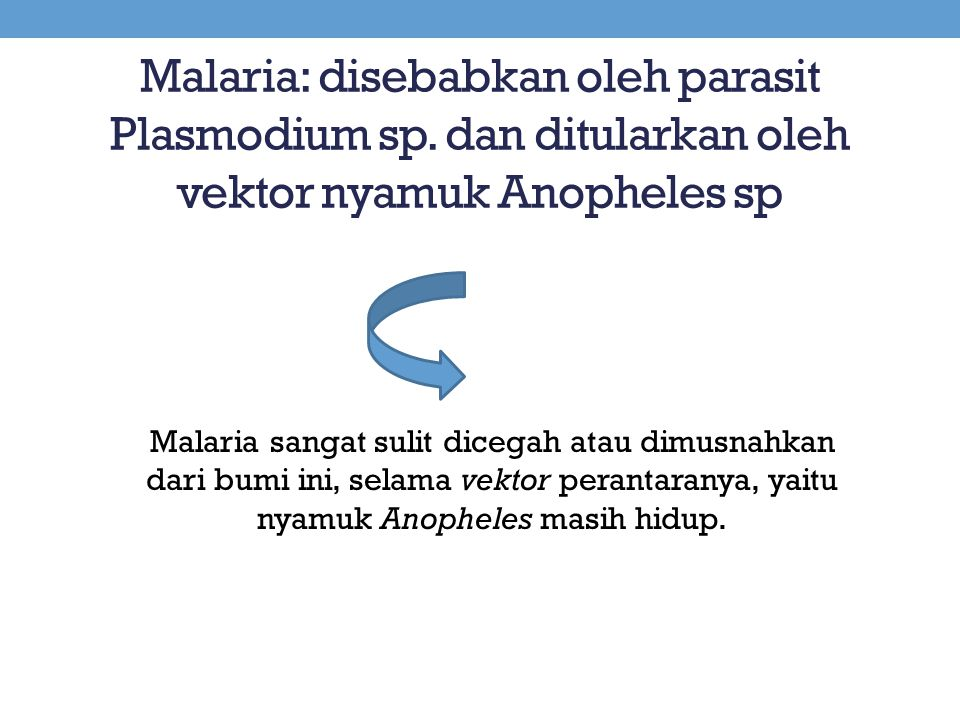 Malaria: disebabkan oleh parasit Plasmodium sp