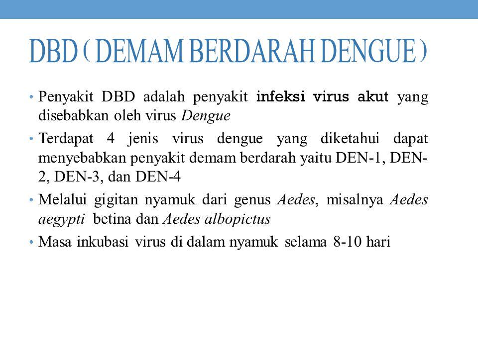DBD ( Demam berdarah dengue )