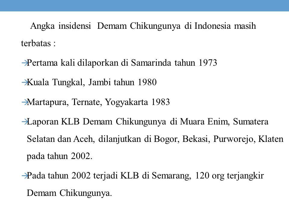Angka insidensi Demam Chikungunya di Indonesia masih terbatas :