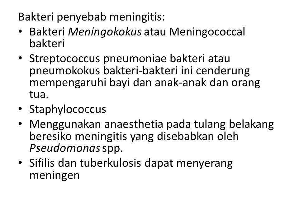 Bakteri penyebab meningitis: