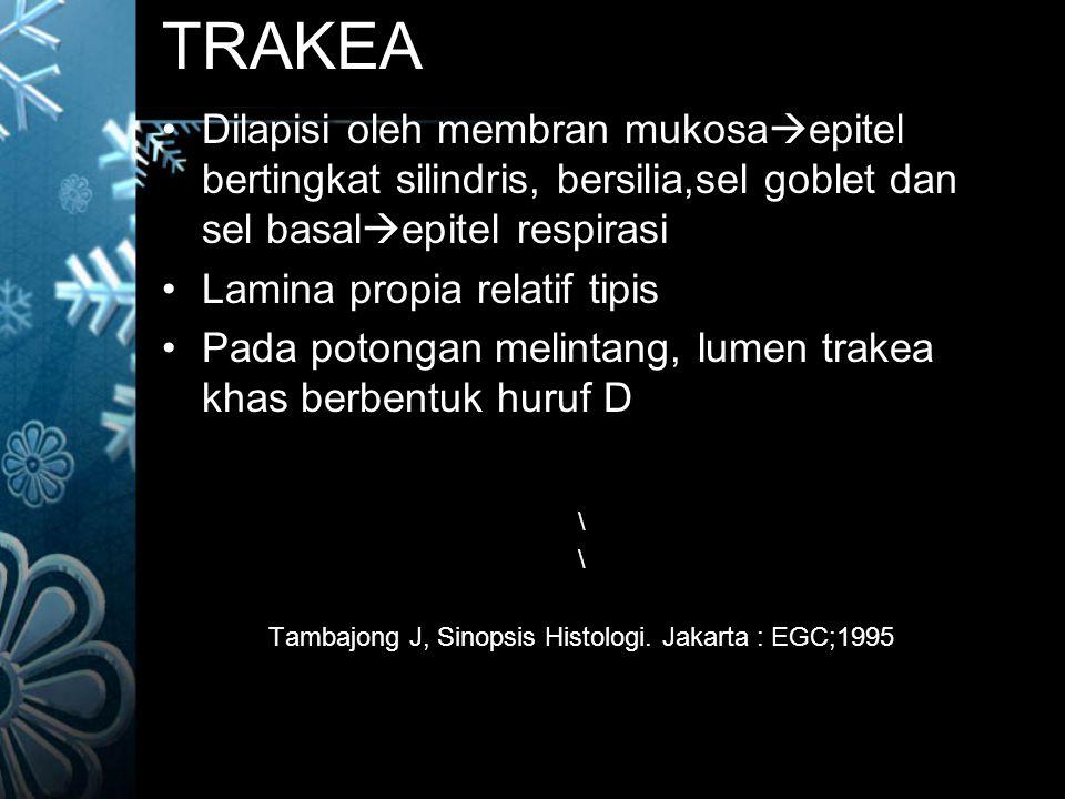 Tambajong J, Sinopsis Histologi. Jakarta : EGC;1995