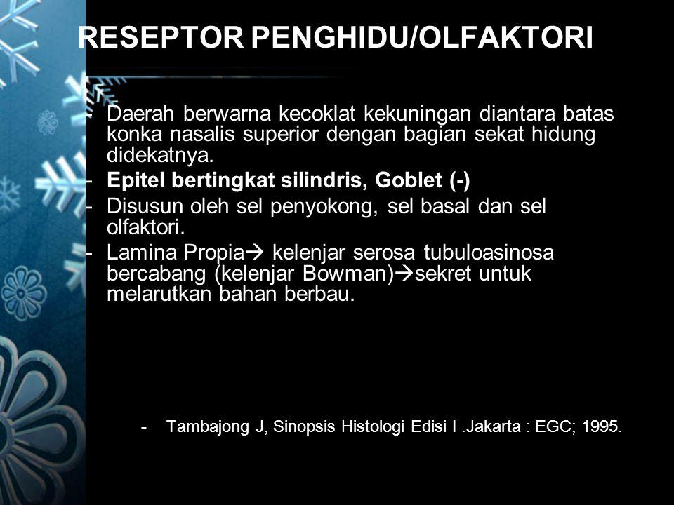 RESEPTOR PENGHIDU/OLFAKTORI