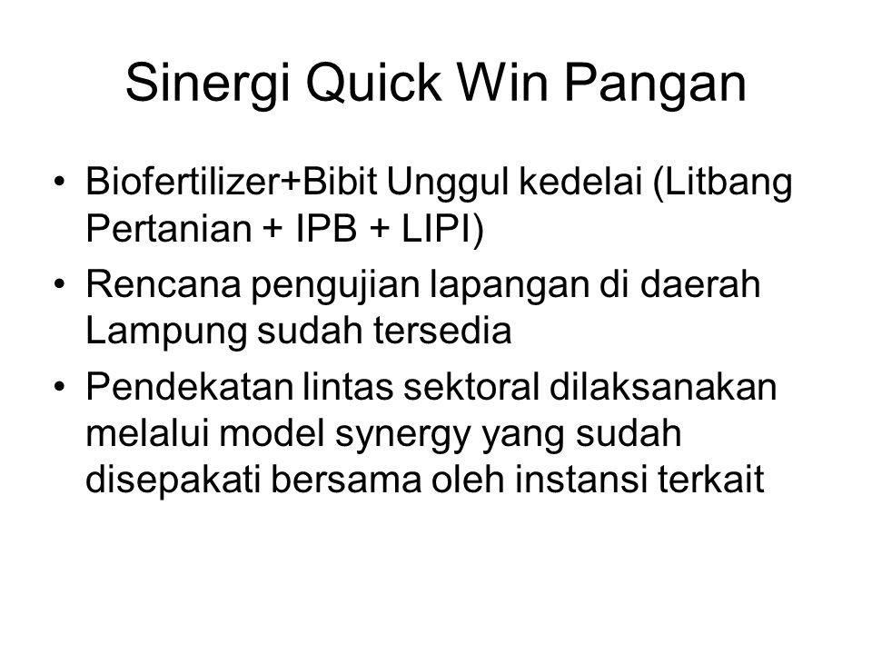 Sinergi Quick Win Pangan