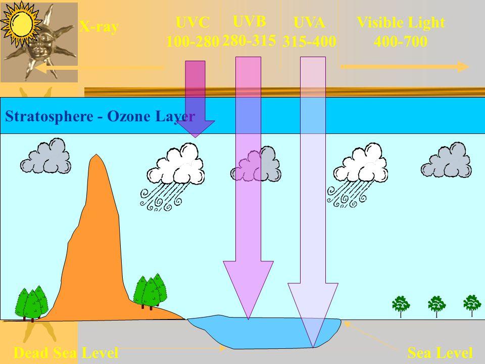 UVC 100-280. UVB. 280-315. UVA. 315-400. Visible Light. 400-700. X-ray. Stratosphere - Ozone Layer.