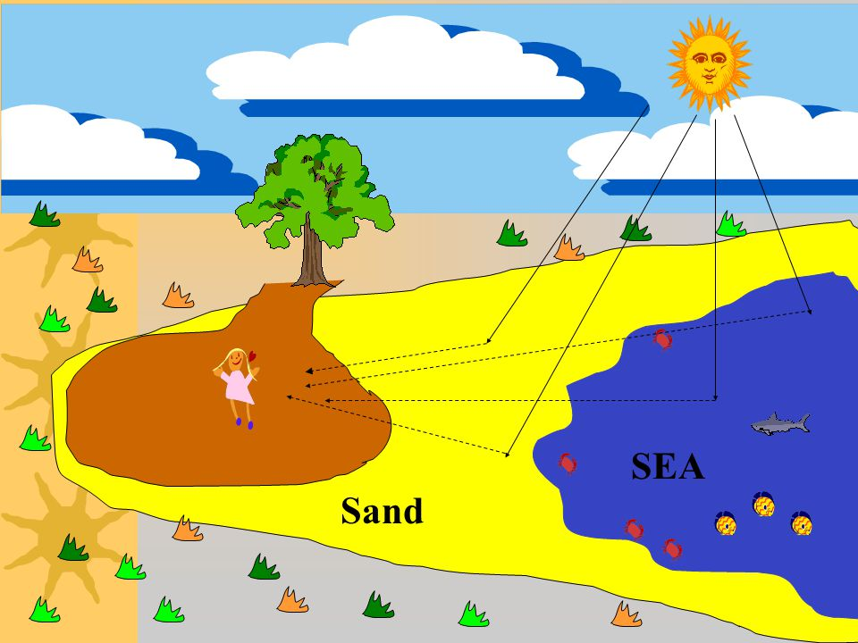 Sand SEA