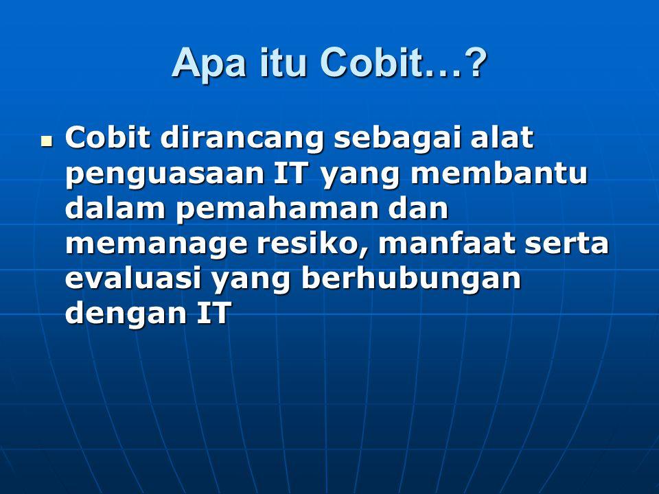 Apa itu Cobit…
