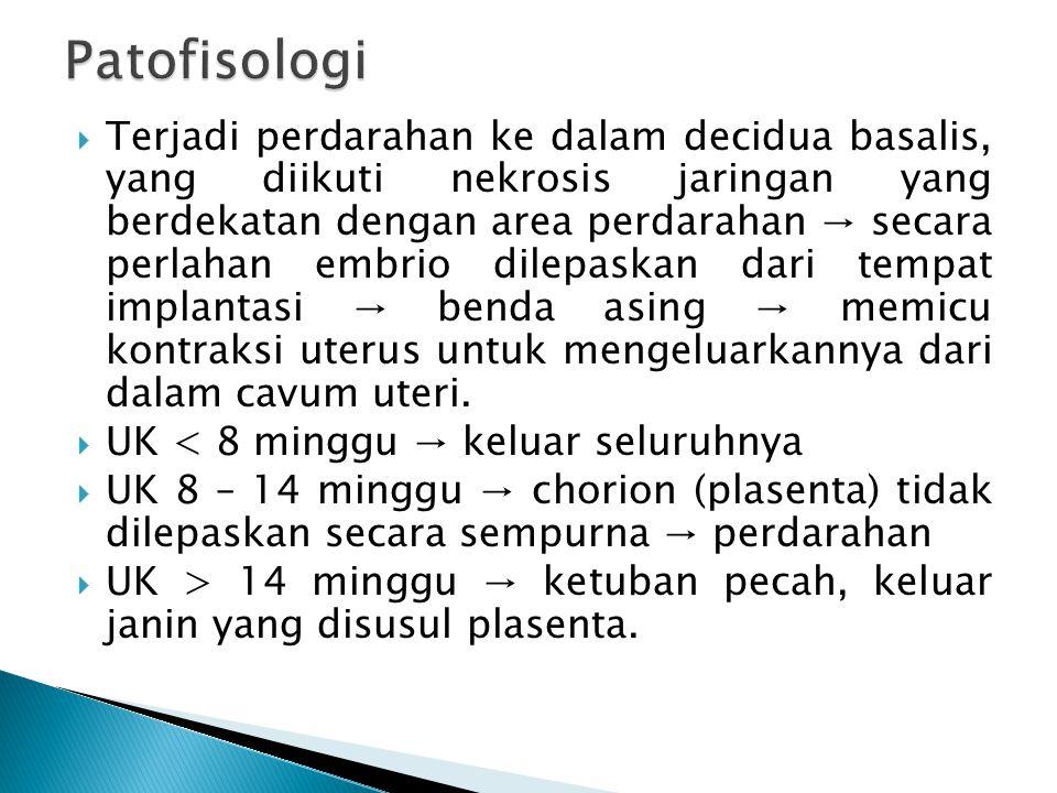 Patofisologi