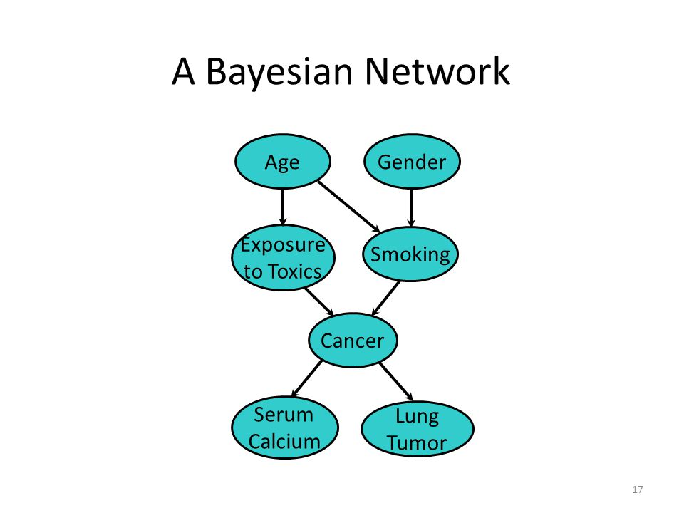 A Bayesian Network Age Gender Exposure to Toxics Smoking Cancer Serum