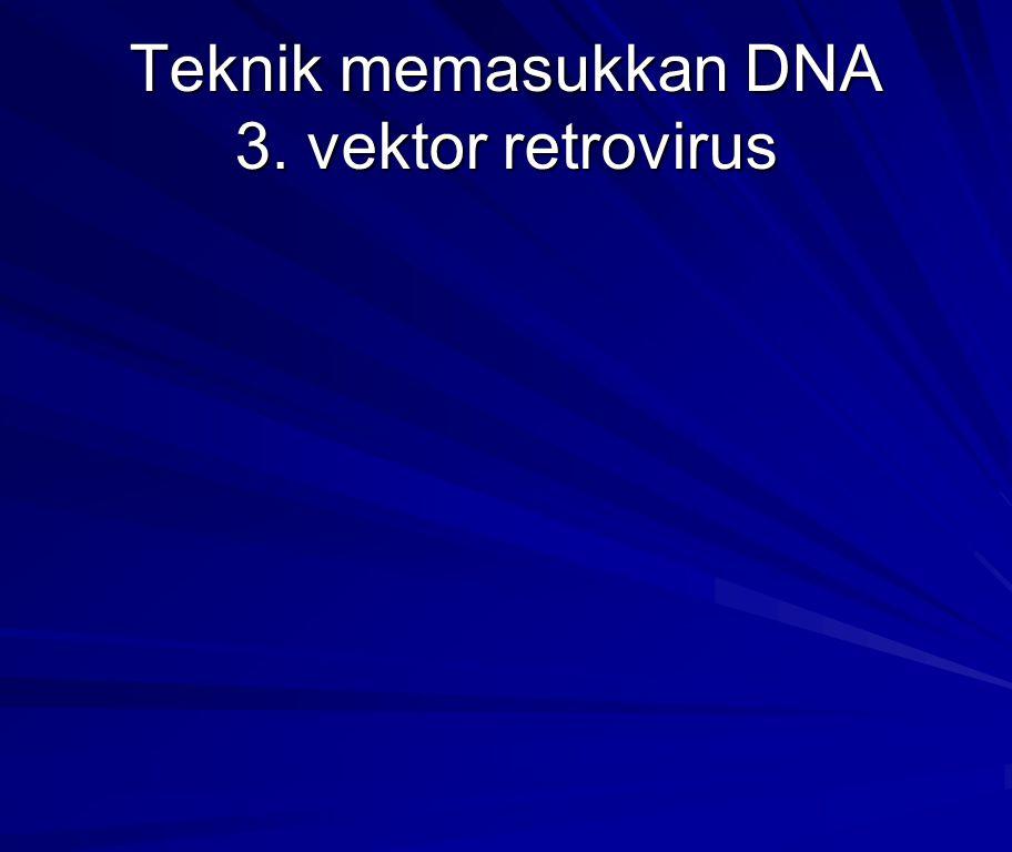 Teknik memasukkan DNA 3. vektor retrovirus