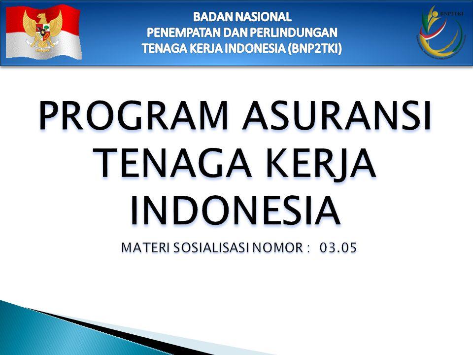 PROGRAM ASURANSI TENAGA KERJA INDONESIA