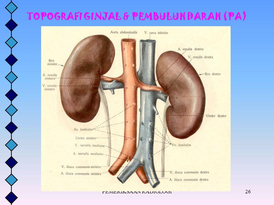 TOPOGRAFI GINJAL & PEMBULUH DARAH (PA)