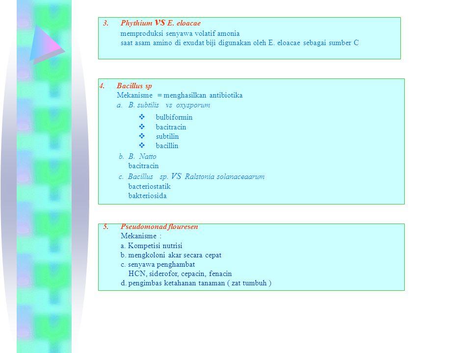 Phythium vs E. eloacae memproduksi senyawa volatif amonia. saat asam amino di exudat biji digunakan oleh E. eloacae sebagai sumber C.