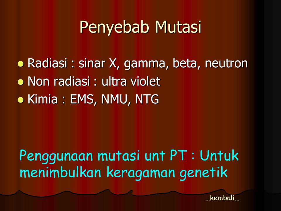 Penyebab Mutasi Radiasi : sinar X, gamma, beta, neutron. Non radiasi : ultra violet. Kimia : EMS, NMU, NTG.