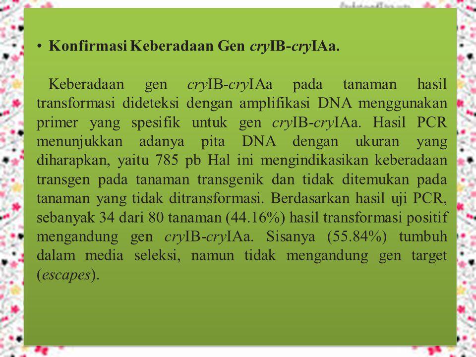 Konfirmasi Keberadaan Gen cryIB-cryIAa.