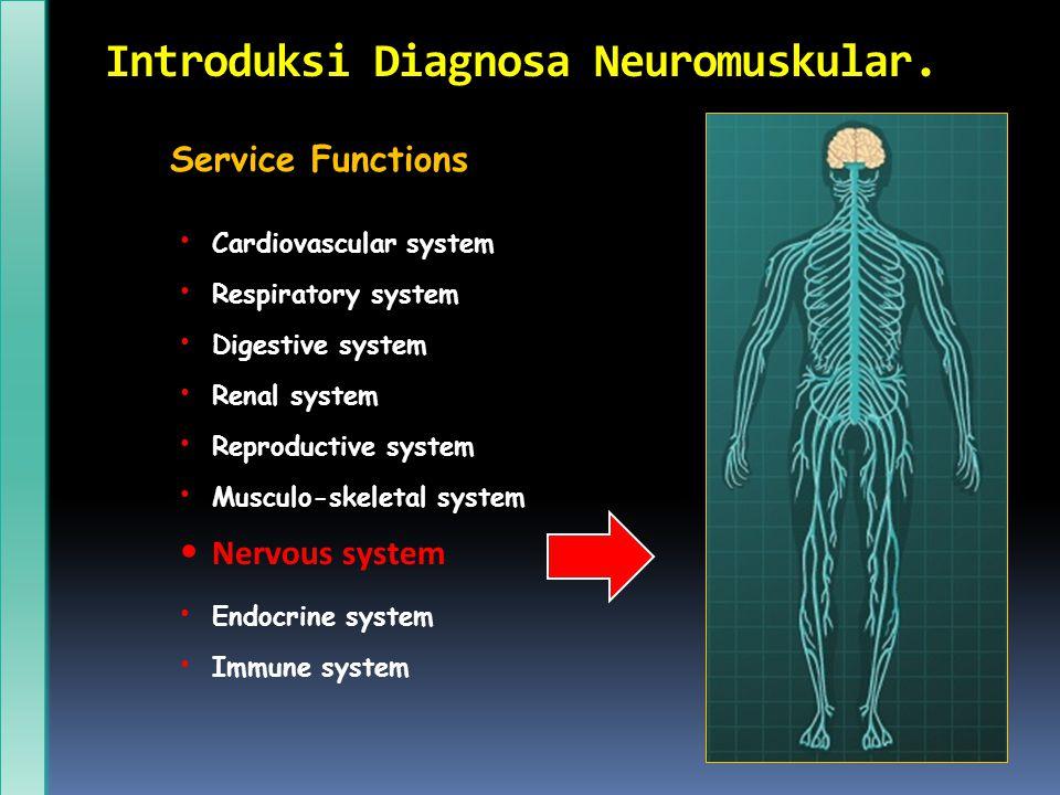 Introduksi Diagnosa Neuromuskular.