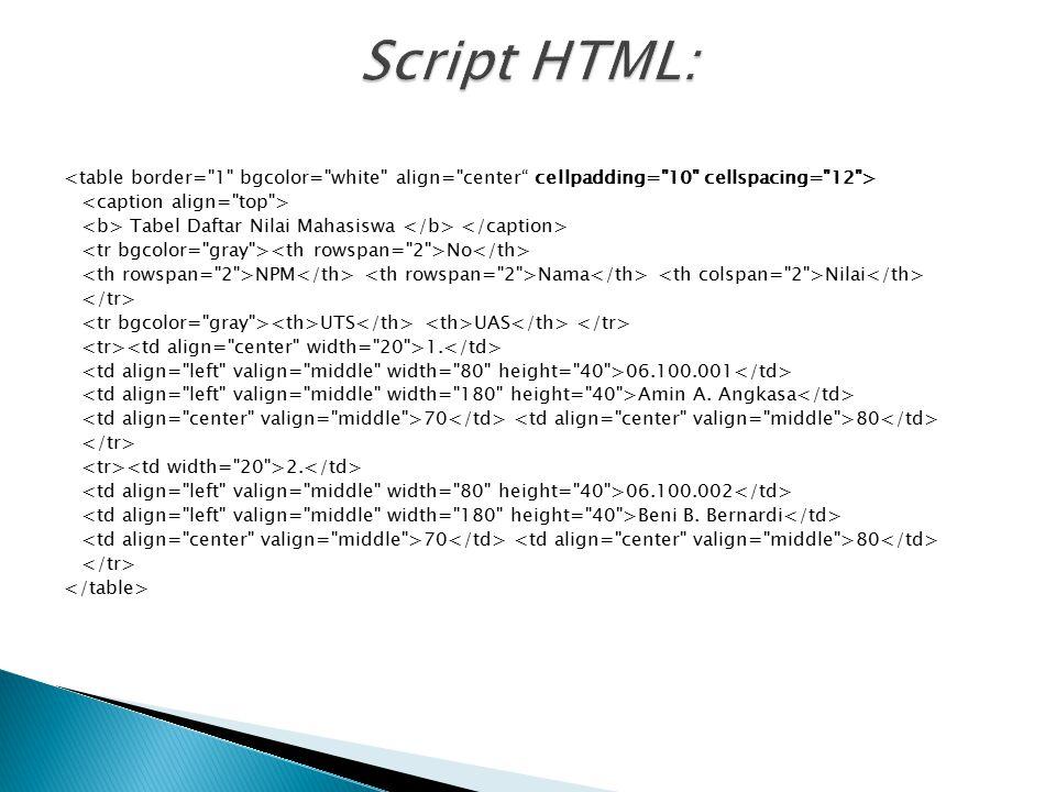 Script HTML:
