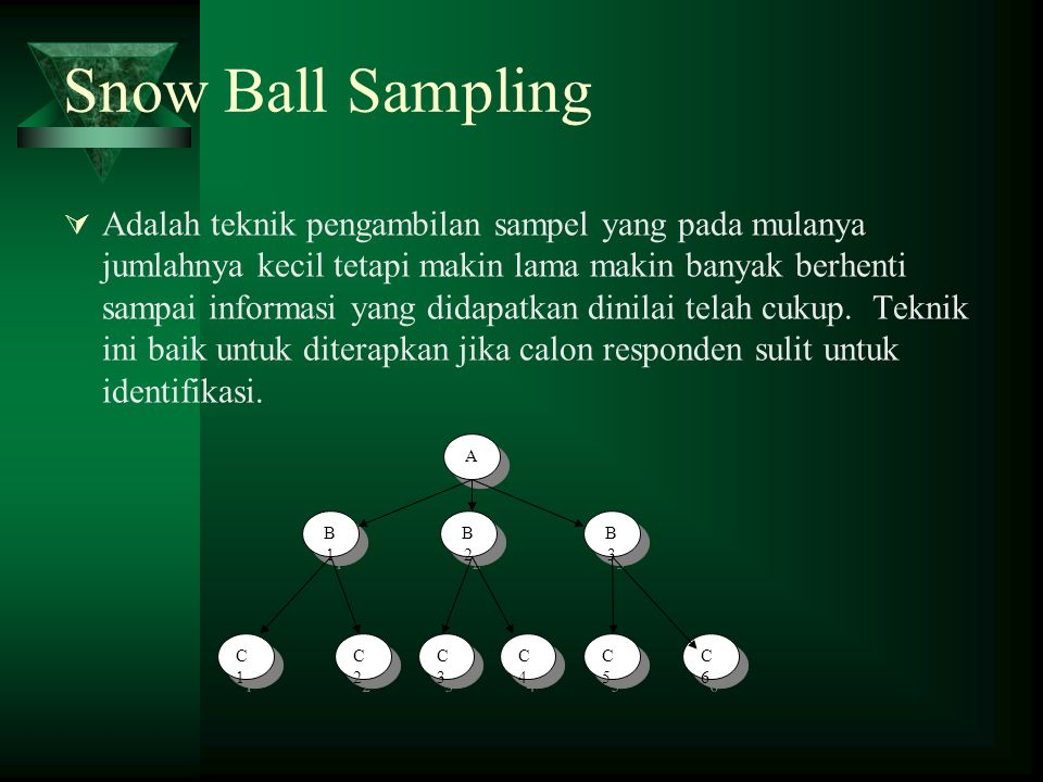 Snow Ball Sampling