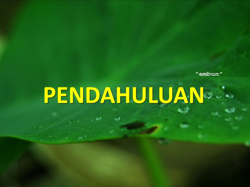 PENDAHULUAN